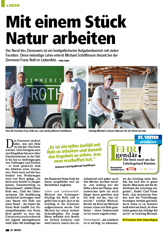 Regionalmedien Kärnten - Bericht